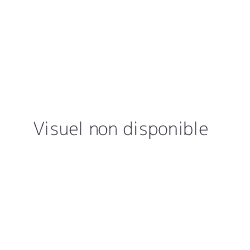 POIS CHICHES BLANCS GRILLES 5KG